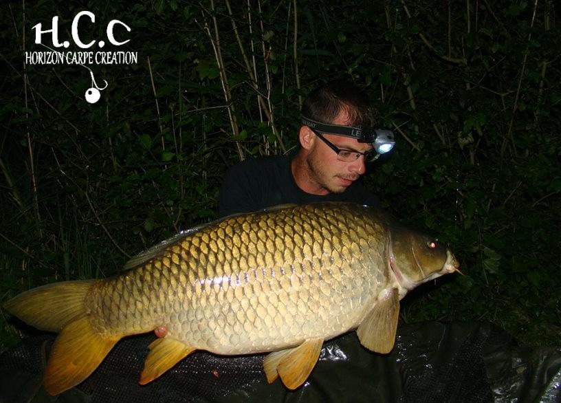 Bapfhcc15