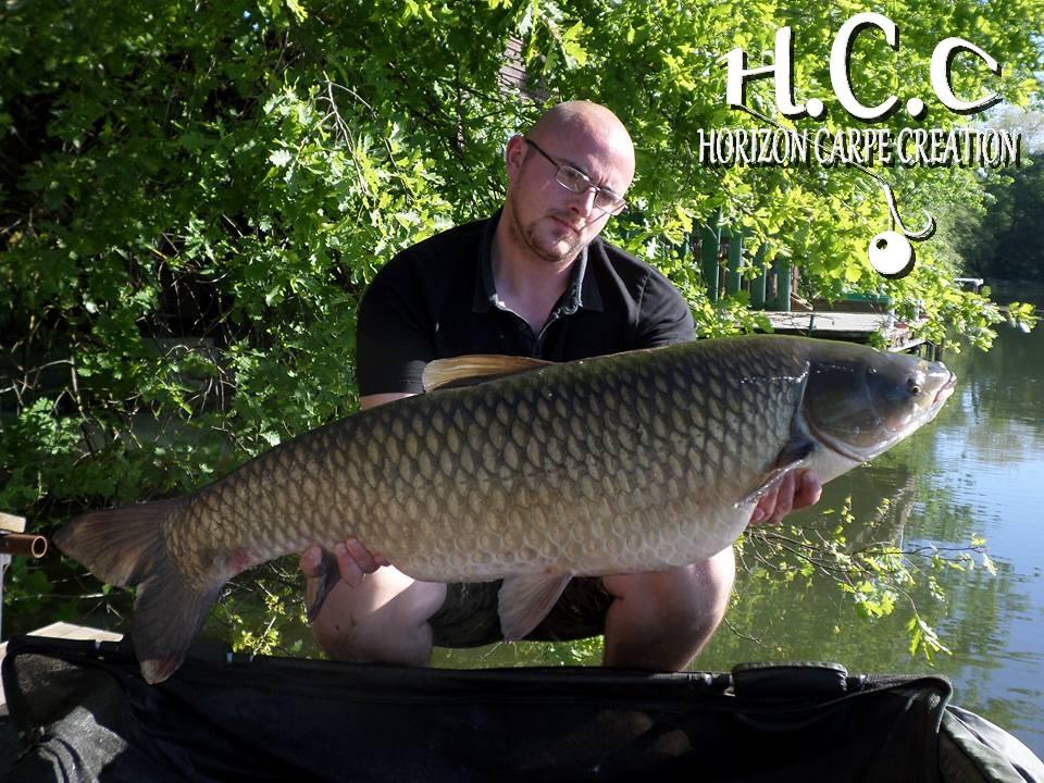 Cedhcc12 2