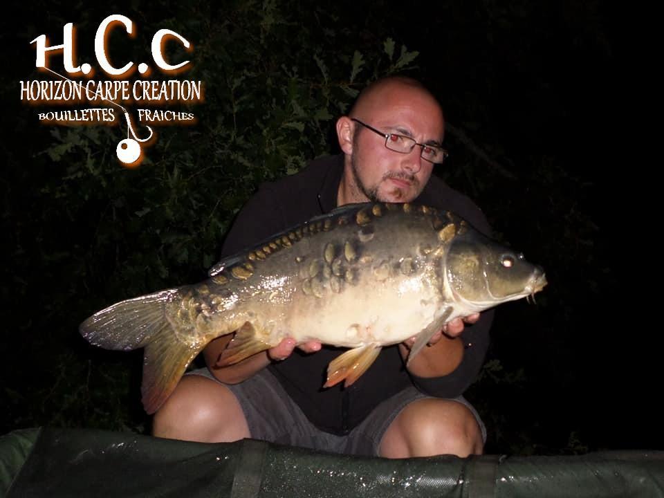 CEDRIC HAVY - CONSULTANT HCC