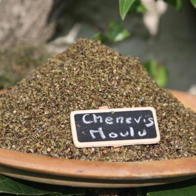 Chenevis 2
