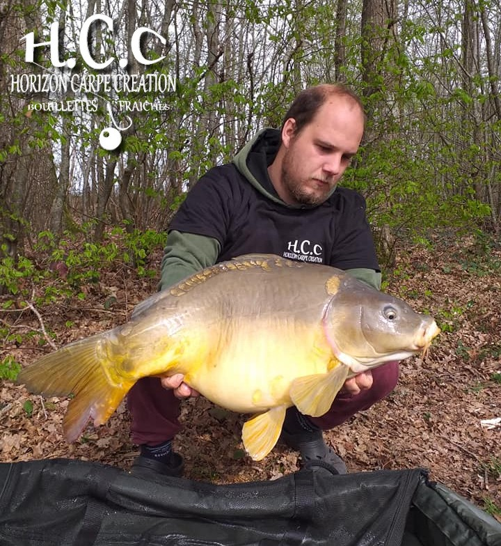 CHRISTOPHER LANSON - TEAM HCC