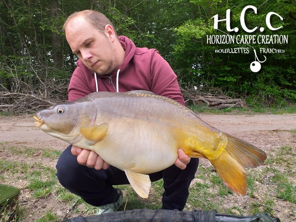 CHRISTOPHE LANSON - TEAM HCC