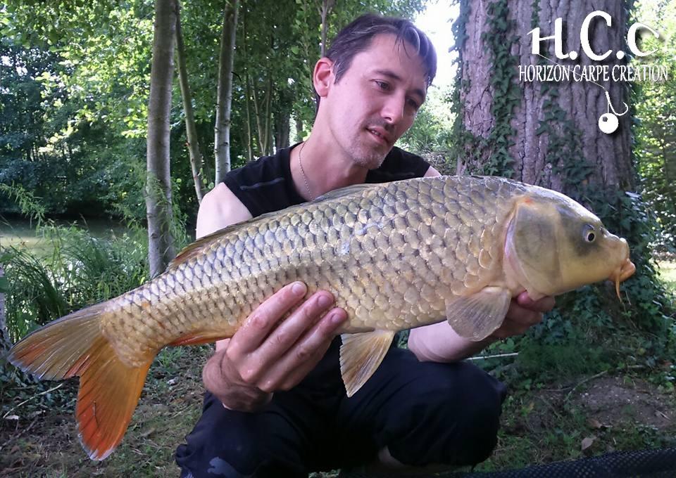 Hugohcc17 1