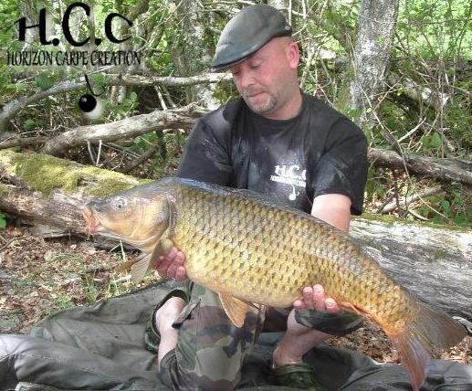 Ludovichcc02