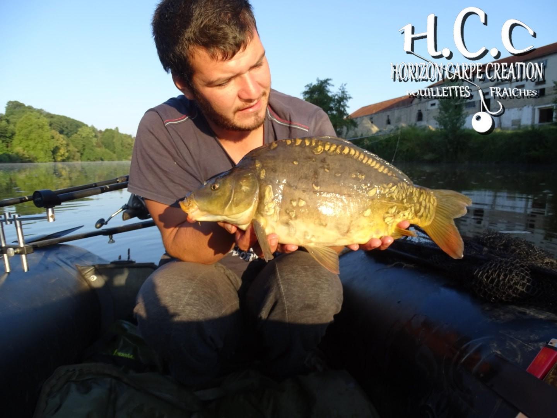 MICKAEL LAURENT - TESTEUR HCC