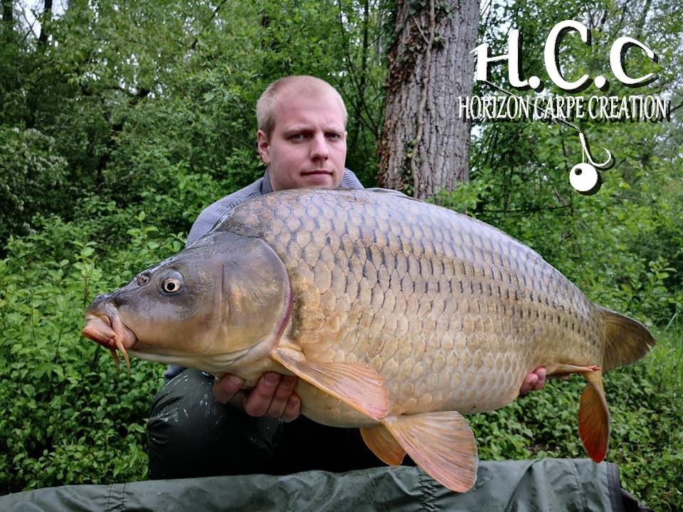 Pierrehcc 5
