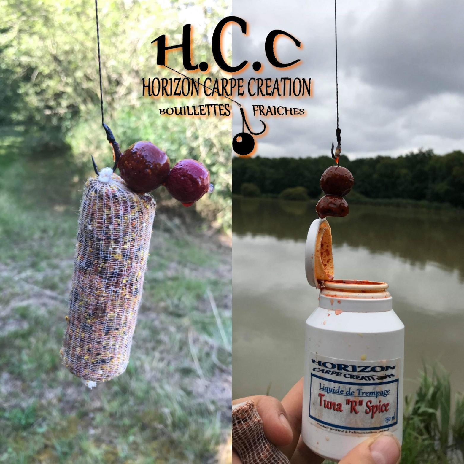 SANDRINE ARMIRAIL - TEAM HCC