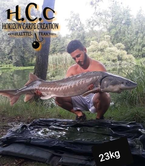 THIBAUT BOYE - CLIENT HCC